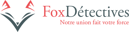 Logo fox detectives